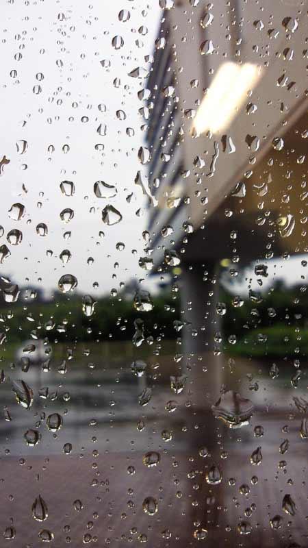 〓雨・・・